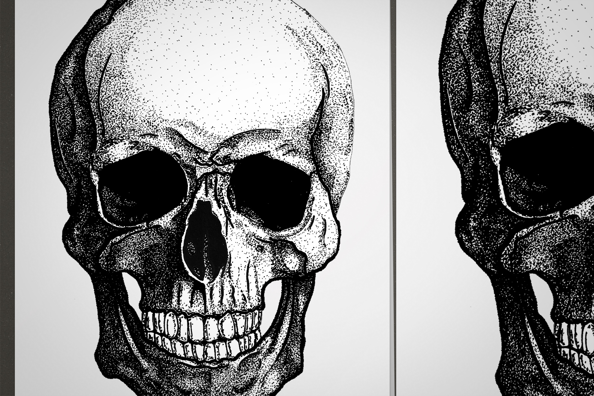 Skull's Head Illustration detail of pointilism and black stains