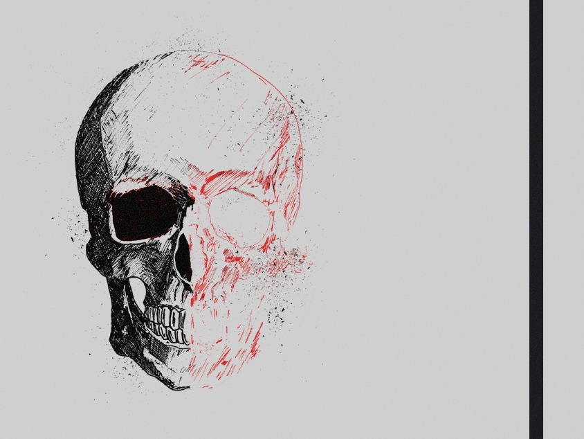 Skull Head Illustration, dissected black and red